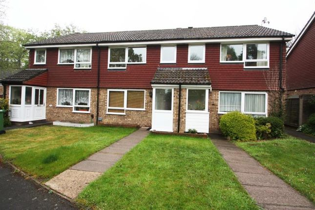 Thumbnail Terraced house to rent in Millholme, Heatherside