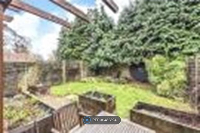 Thumbnail Semi-detached house to rent in Helens Close, Alton