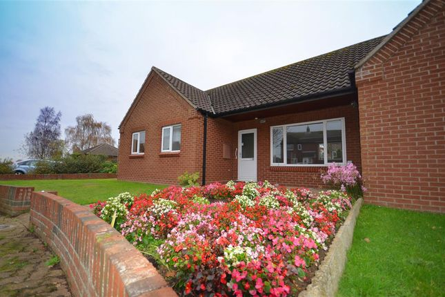 Thumbnail Bungalow for sale in Broadland Close, Reedham, Norwich