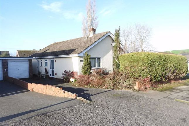 Thumbnail Detached bungalow for sale in Heol Helyg, Cardigan, Ceredigion