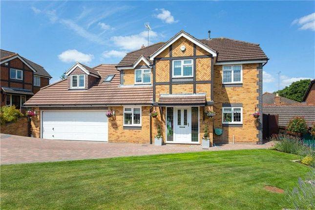 Thumbnail Property to rent in Redgrove Park, Cheltenham