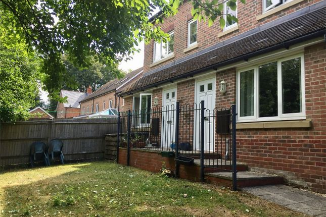 Thumbnail Flat to rent in Thornton Close, Alresford