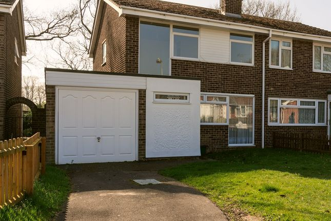 4 bed semi-detached house to rent in Keelers Way, Great Horkesley, Colchester CO6