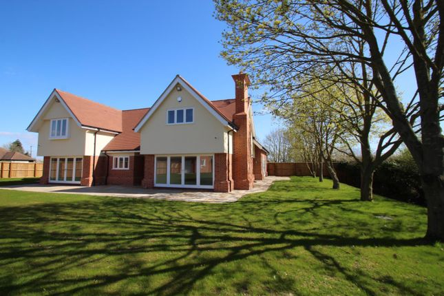 Thumbnail Detached house for sale in Great Tey Road, Little Tey, West Of Colchester