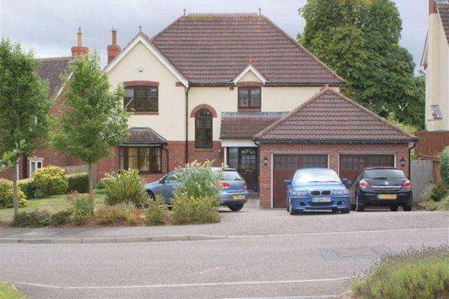 Thumbnail Property to rent in Lethbridge Park, Bishops Lydeard, Taunton