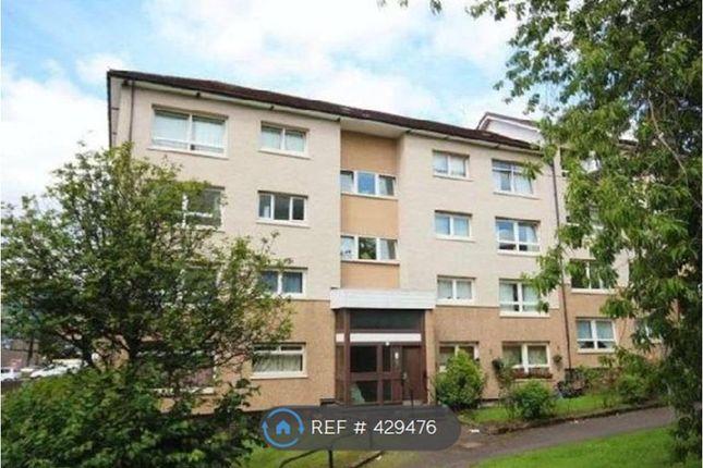 Thumbnail Flat to rent in St. Mungo Avenue, Glasgow