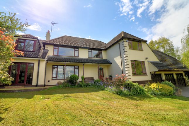 Thumbnail Detached house for sale in Middle Street, Nazeing, Waltham Abbey