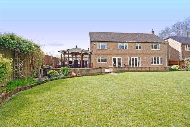 Thumbnail Detached house for sale in The Sanderlings, Peakirk, Peterborough