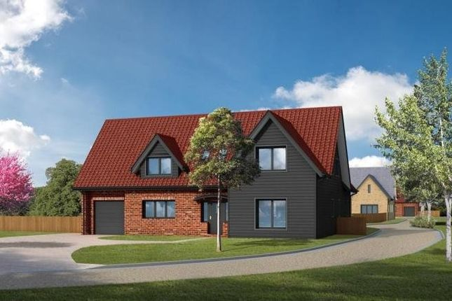 Thumbnail Detached house for sale in Red Lodge, Bury St Edmunds, Suffolk