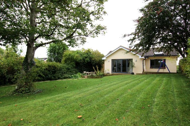 Thumbnail Bungalow for sale in Southleigh, Bradford On Avon