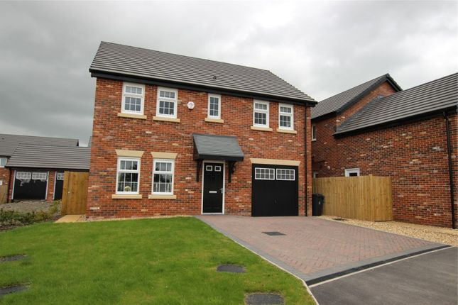 Thumbnail Detached house to rent in 69 Meadow Lane, Carlisle, Cumbria