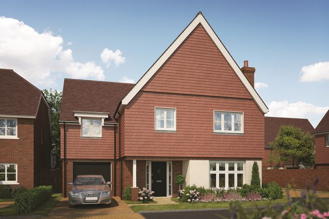 Thumbnail Detached house for sale in Sycamore Gardens, Epsom