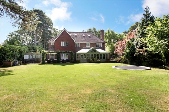 Thumbnail Detached house for sale in Old Woking Road, Pyrford, Woking, Surrey