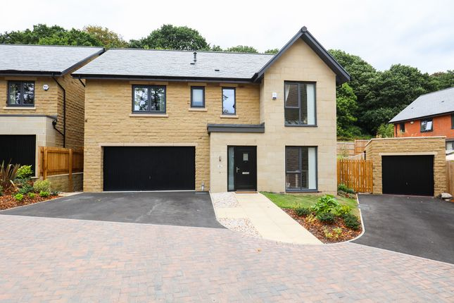 Thumbnail Detached house for sale in Hastings Road, Sheffield