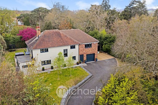 Thumbnail Detached house for sale in St Clare Road, Lexden, Colchester