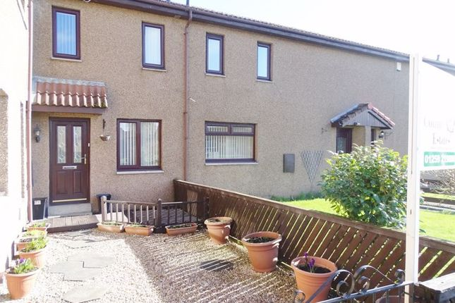 Thumbnail Terraced house for sale in Earls Court, Alloa