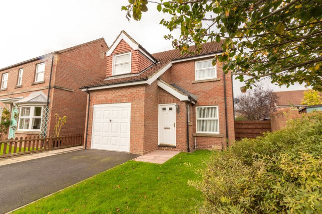 Thumbnail Detached house to rent in Columbus Way, Brompton On Swale, Richmond