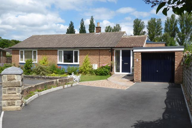 Thumbnail Detached bungalow for sale in Pine Grove, Northallerton