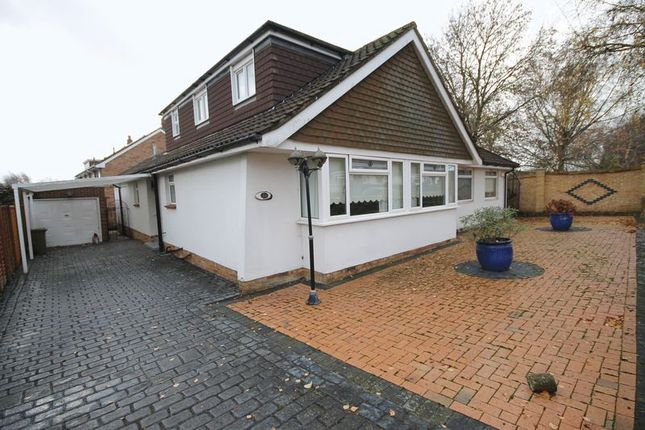 Thumbnail Bungalow to rent in Birch Tree Drive, Emsworth