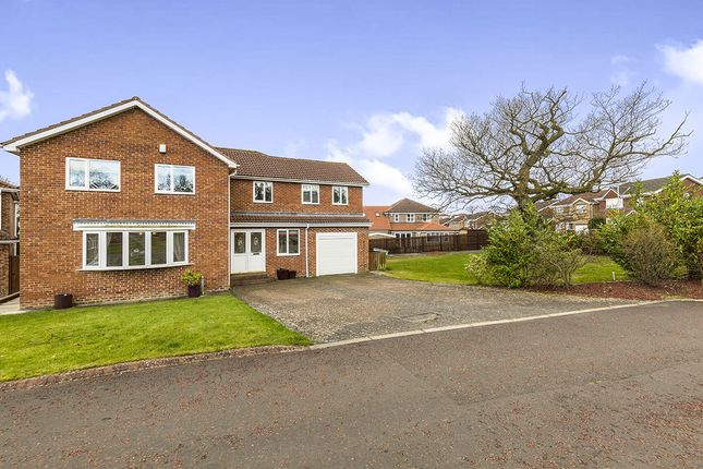 Thumbnail Detached house to rent in Austen Way, Crook