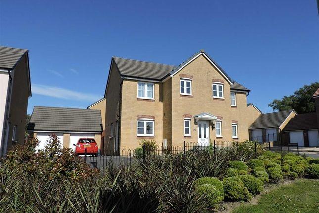 Thumbnail Detached house for sale in Llys Mieri, Penllergaer, Swansea