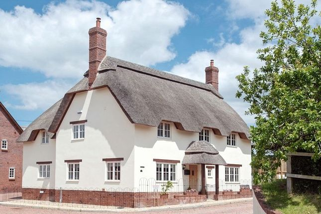 Thumbnail Detached house for sale in Milborne St. Andrew, Blandford Forum