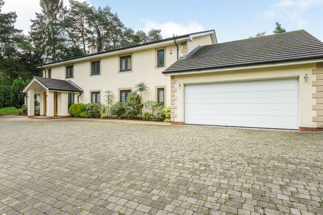 Thumbnail Detached house for sale in Wheatsheaf Enclosure, Liphook