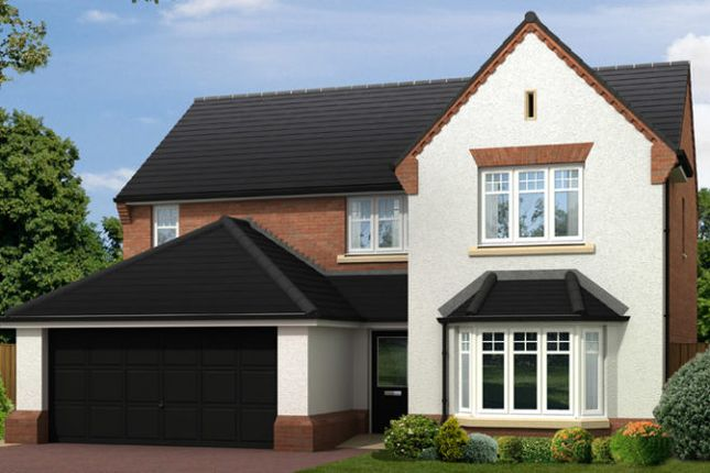 """Thumbnail Detached house for sale in """"The Warkworth Contemporary"""" at Doublegates Avenue, Ripon"""