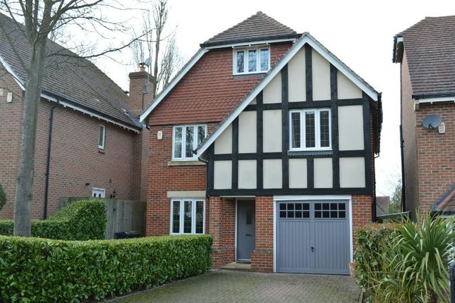 Thumbnail Detached house to rent in Poplar Close, Epsom