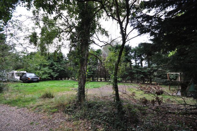 Thumbnail Land for sale in Church Lane, Great Holland
