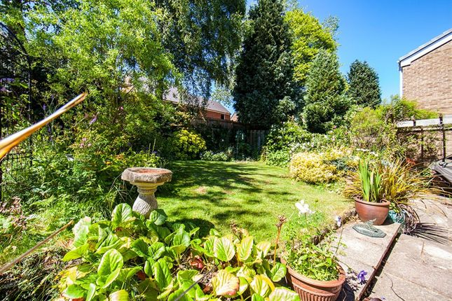 Garden of Rectory Dene, Morpeth NE61
