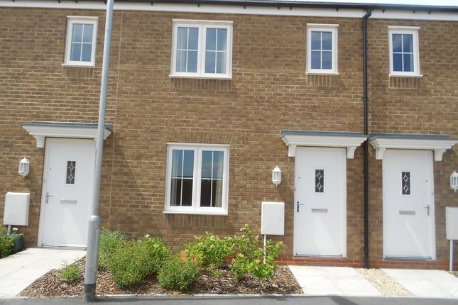 Thumbnail Terraced house to rent in Cunningham Road, Yeovil