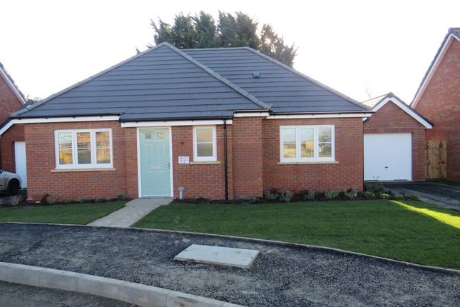 Thumbnail Detached bungalow for sale in Scholars Close, Manea, March