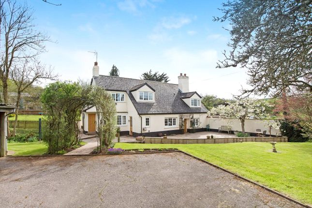 Thumbnail Detached house for sale in Langford Road, Newton St. Cyres, Devon
