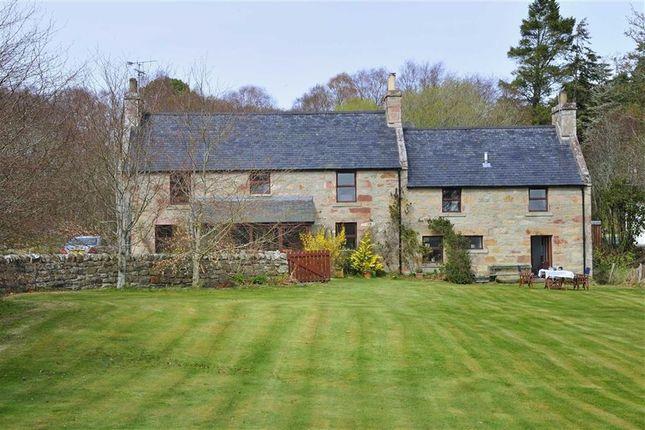 Thumbnail Cottage for sale in Clashmore, Dornoch