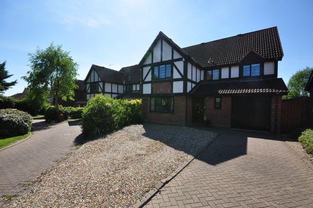 Thumbnail Detached house for sale in De Lucy Close, Roydon, Diss