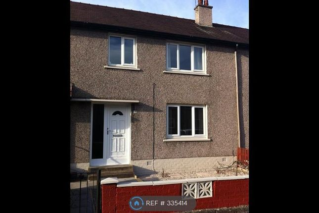 Thumbnail Terraced house to rent in Paterson Place, Falkirk