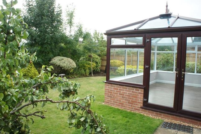 Garden of Sherbourne Avenue, Bradley Stoke, Bristol BS32