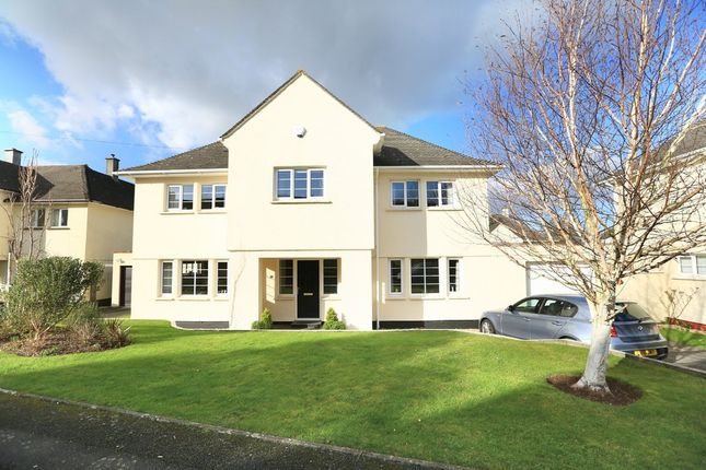 Thumbnail Detached house for sale in Campbell Road, Plymstock, Plymouth
