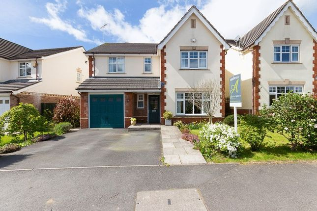 Thumbnail Detached house for sale in Millstream Meadow, Chudleigh, Newton Abbot