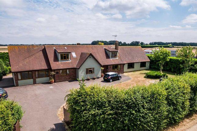 Thumbnail Detached house for sale in Hillcroft, Daveys Lane, Bardwell