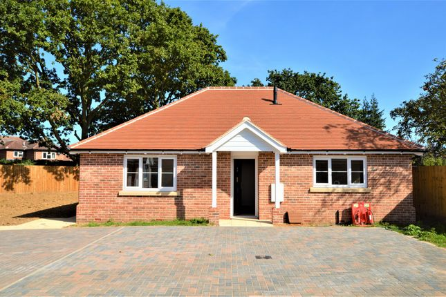 Thumbnail Detached bungalow for sale in King Harold Road, Colchester