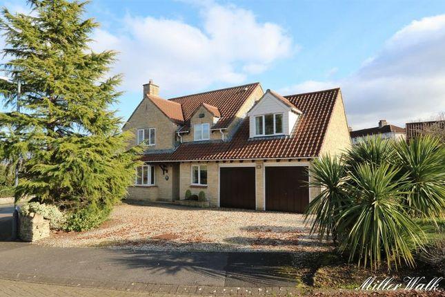 Thumbnail Detached house for sale in Miller Walk, Bathampton, Bath