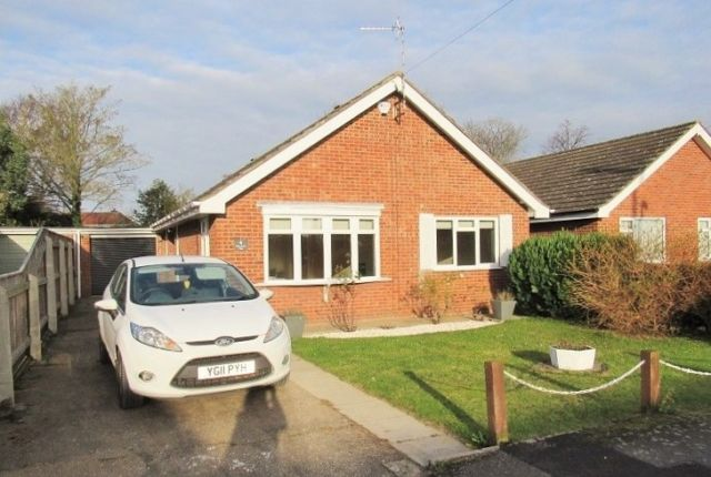 Thumbnail Bungalow to rent in Albany Road, Louth