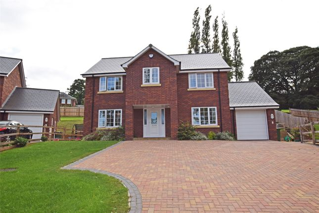 Thumbnail Detached house to rent in Pinn Hill, Exeter, Devon
