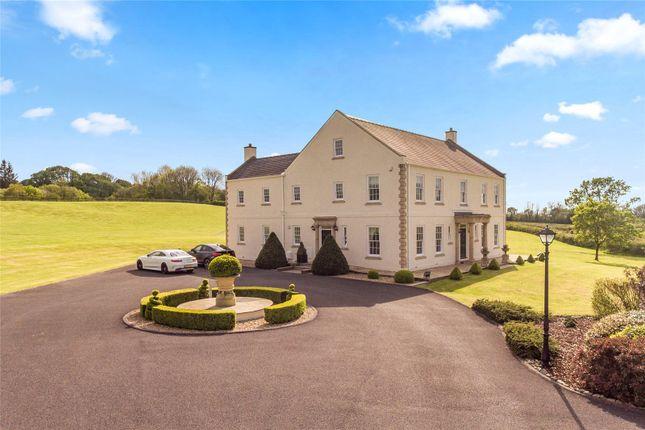 Thumbnail Detached house for sale in Ty Hir, Nantycaws, Carmarthen, Sir Gaerfyrddin