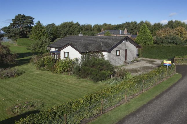 Thumbnail Detached bungalow for sale in The Croy, Cairnie Road, St Madoes, Perth