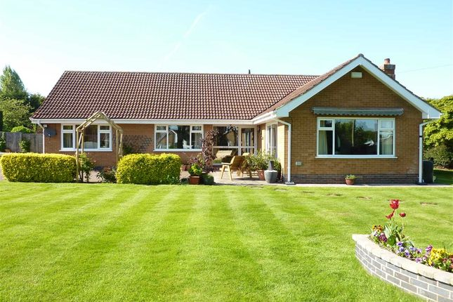 Thumbnail Detached bungalow for sale in Mill View, Waltham, Grimsby