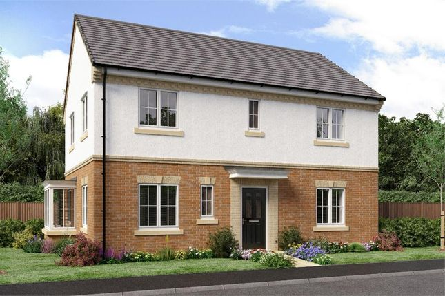"Thumbnail Detached house for sale in ""The Stevenson"" at Weldon Road, Cramlington"