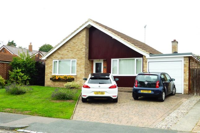 Thumbnail Detached bungalow to rent in Sergison Road, Haywards Heath